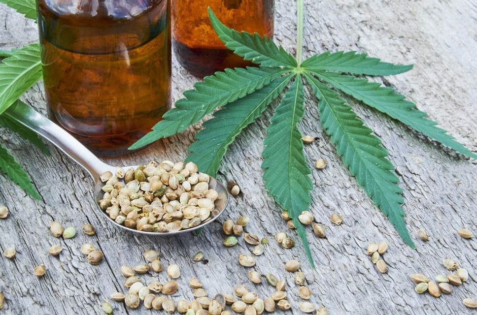 CBD from Jelly Beans to Burgers – Exciting Cannabis Oil Launches to look out for in 2019
